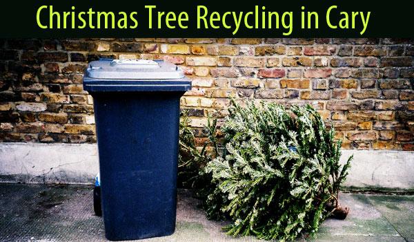 christmas-tree-recycling-cary