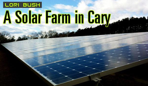solar-farm-cary