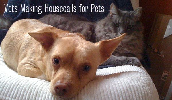 vets-housecalls