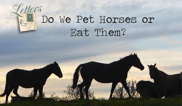 letters-horsemeat