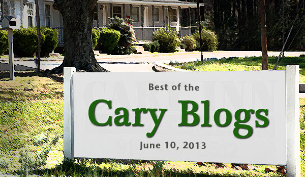 cary-nc-blogs