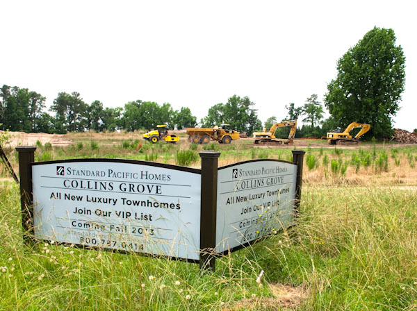 collins-grove-1