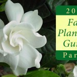 Fall Planting Guide Part 2