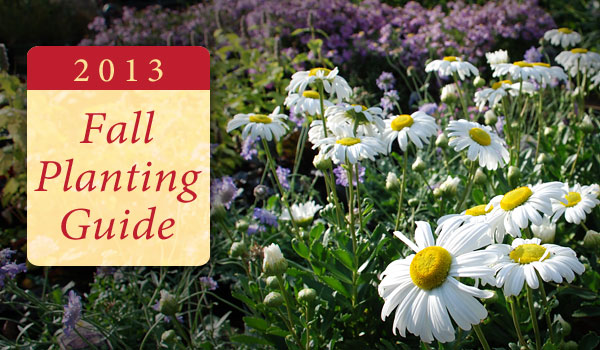fall-planting-guide-2013