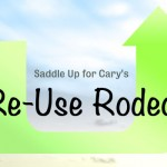 re-use rodeo
