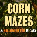 corn-mazes-cary