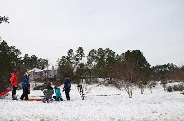snow-0129-0155