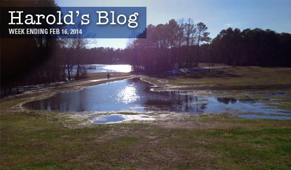 harolds-blog-0216