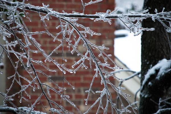 winter-storm-pax-0339