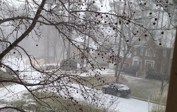 winter-storm-pax-3010