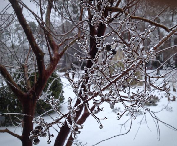 winter-storm-pax-3019