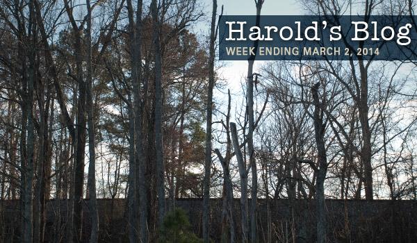 harolds-blog-030214