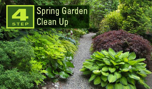 spring-garden-clean-up