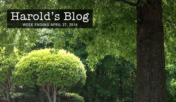 harolds-blog-0427