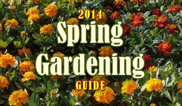 spring-gardening-2014