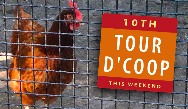 Tour D'Coop