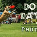 dog-days-2014