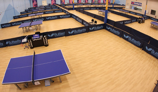 triangle-table-tennis-1