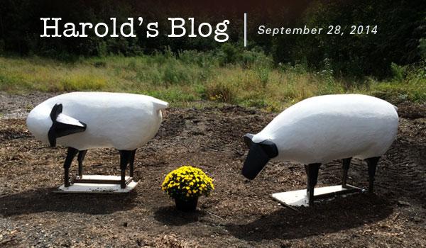 harolds-blog-0928