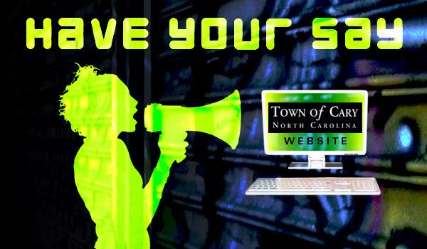 town-website