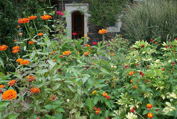 sarah-duke-gardens-0157