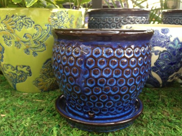 pretty ceramic cache pots coupled with a bright indoor plant will warm a gardeners heart in winter