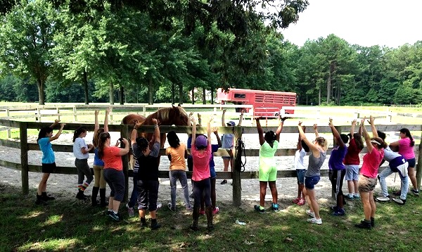 CORRAL provides fosters confidence in girls as they work with horses--and with one another.