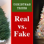 christmas-trees-real-vs-fake