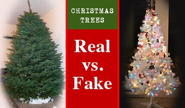 christmas-trees-real-vs-fake