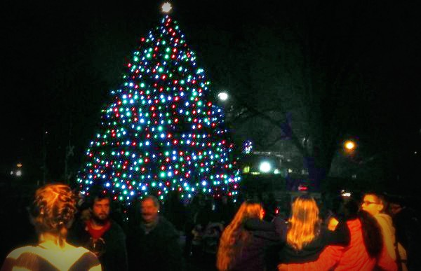 Cary's official Christmas tree is located on the south side of Town Hall.