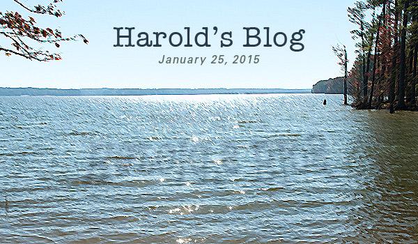 harold-0125