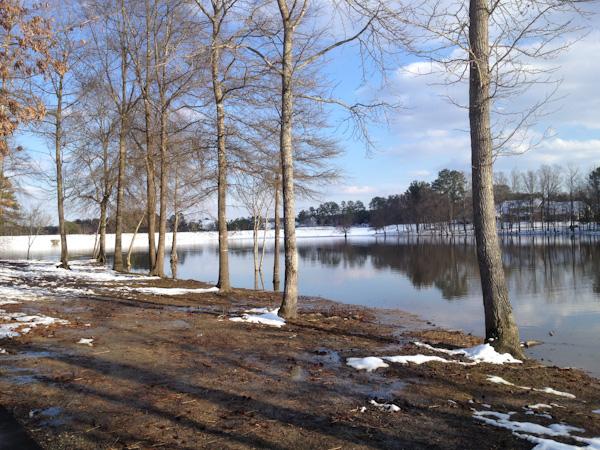 snow-2015-6058