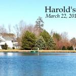 Harold's Blog