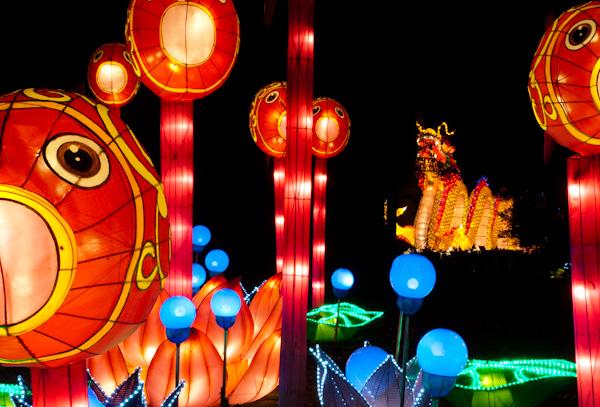 chinese-lantern-0089