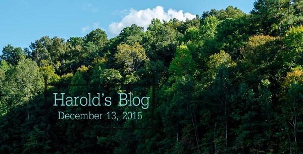 Harold's Blog5