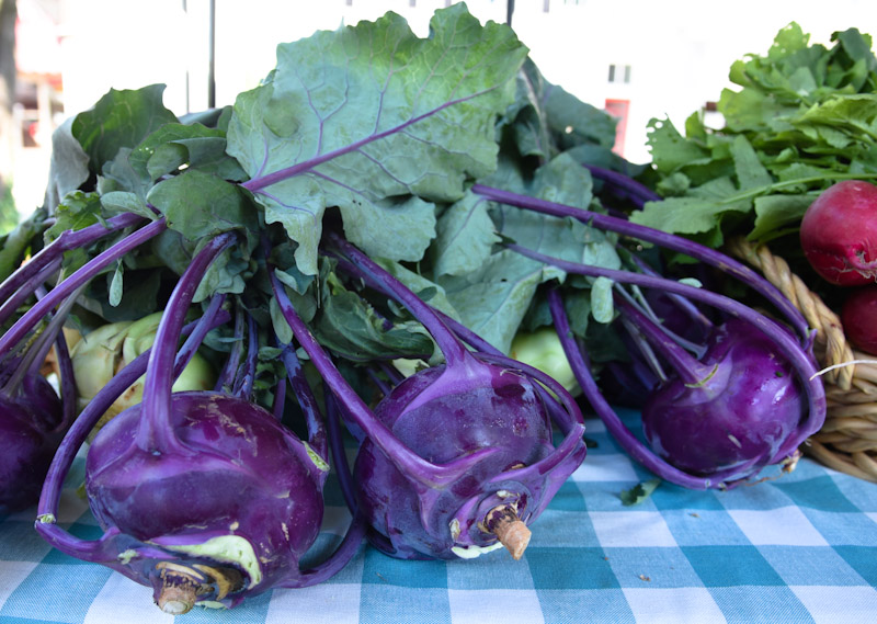 downtown cary farmers market-1045
