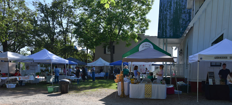 downtown cary farmers market-1056