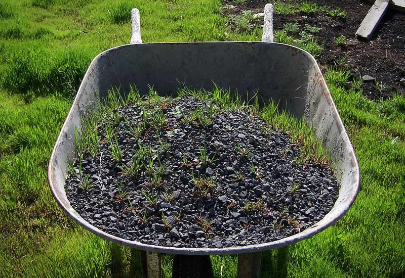 checklist-fall-gardening-2