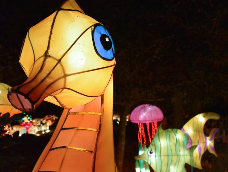 lantern-fest-2016-6