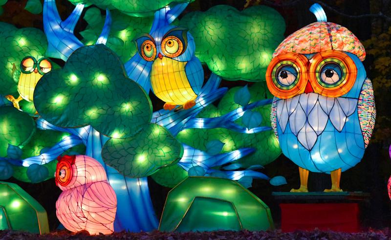 lantern-fest-2016-9