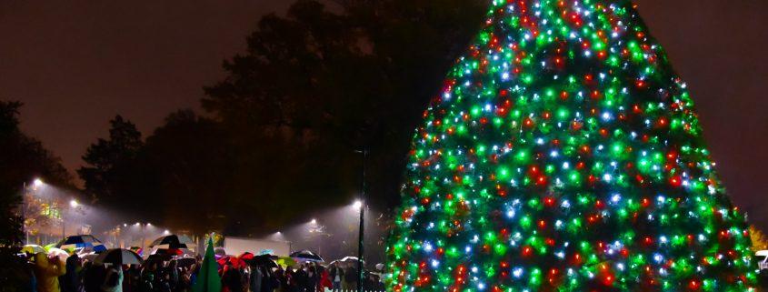 Cary Christmas