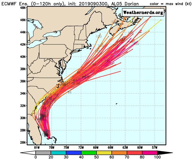 Cary Hurricane
